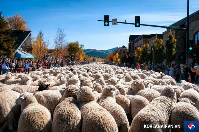 Những lễ hội nổi tiếng nhất ở Mỹ